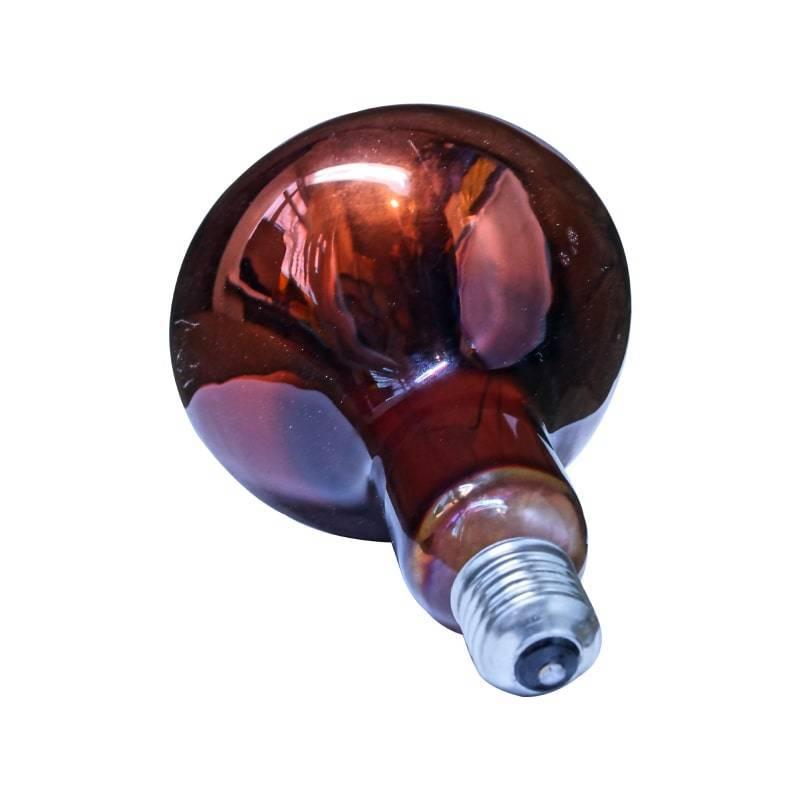 Инфракрасные лампы для обогрева: устройство и разновидности, применение