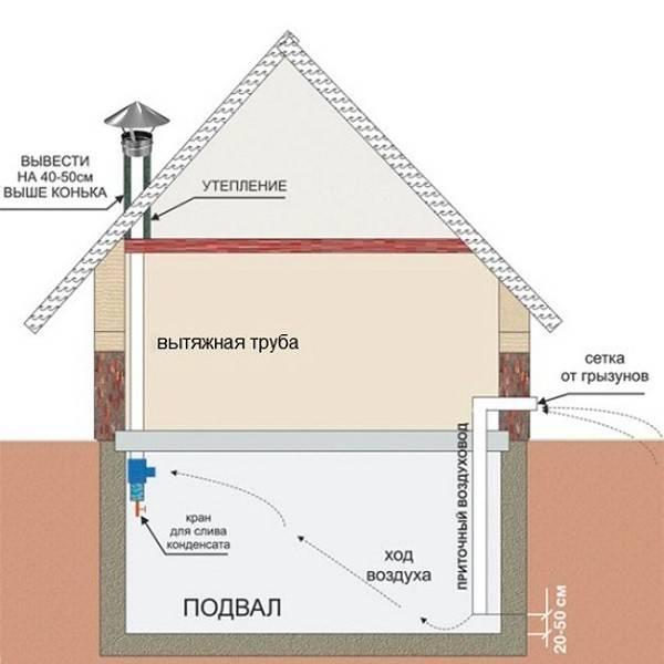 Конденсат на потолке в подвале и гараже: как избавиться   инженер подскажет как сделать
