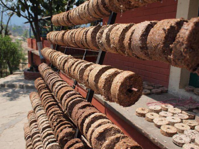 Бизнес-план по производству топливных брикетов из соломы