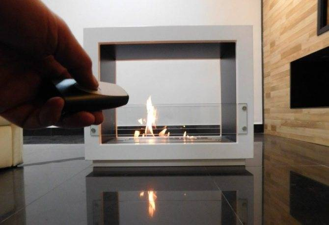 Жидкое биотопливо первого и второго поколения   отопление дома и квартиры