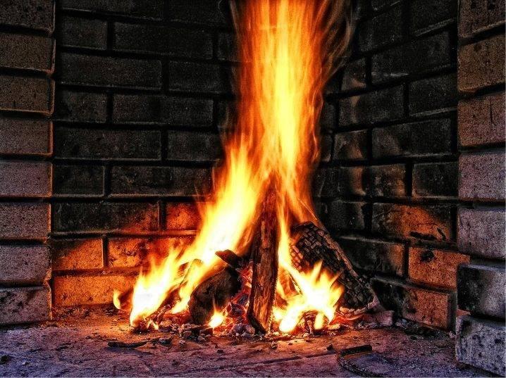 Какие дрова используются для растопки камина?