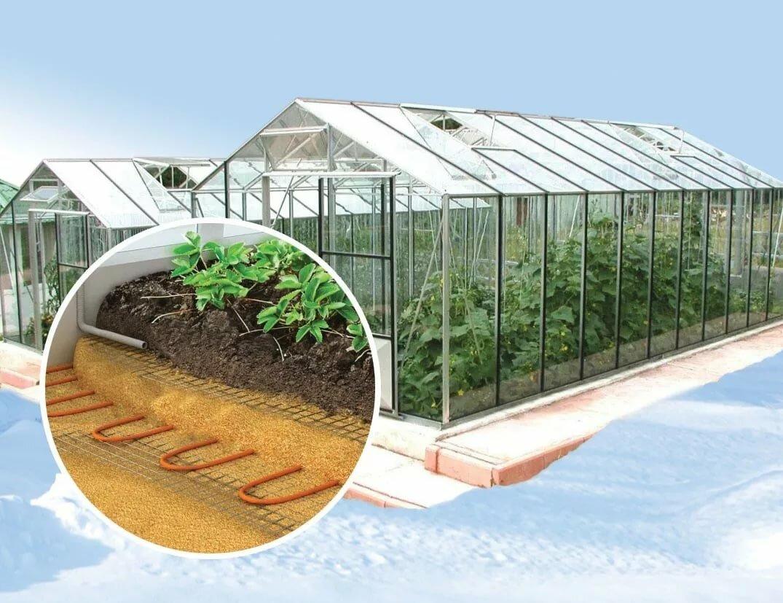 Создаем зимнюю теплицу из поликарбоната с отоплением своими руками: нюансы строительства и обогрева