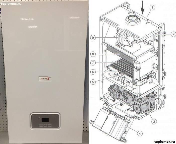 Как выбрать газовый котел Протерм – виды, преимущества, характеристики