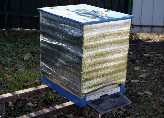 Основные правила зимовки пчел в ульях разного типа