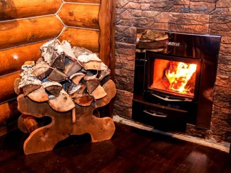 Какие дрова лучше всего использовать для растопки камина