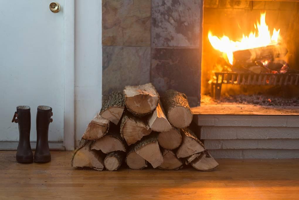 Дрова для камина: разновидности твёрдого топлива и недорогие альтернативные решения