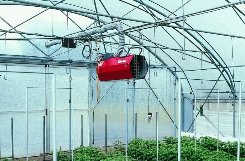 Отопление теплицы из поликарбоната: водяное, инфракрасное, воздушное