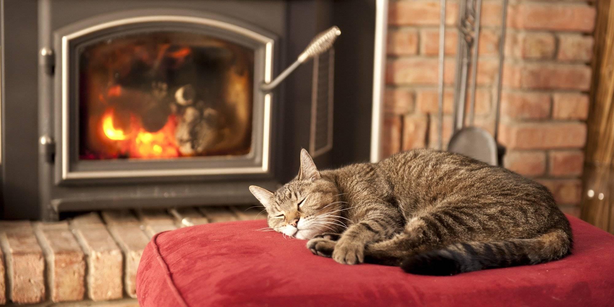 Плюсы и минусы камина как источника отопления в доме