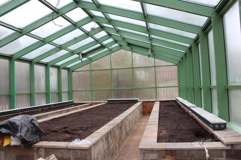 Что можно выращивать в теплице зимой – зеленые витамины круглый год   дела огородные (огород.ru)