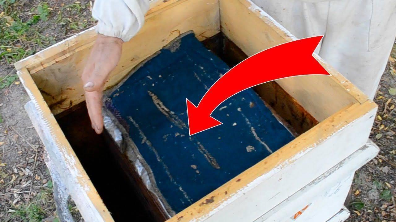 Способы утепления пчелиных ульев.с помощью каких материалов лучше всего производить утепление улья в холодное время года