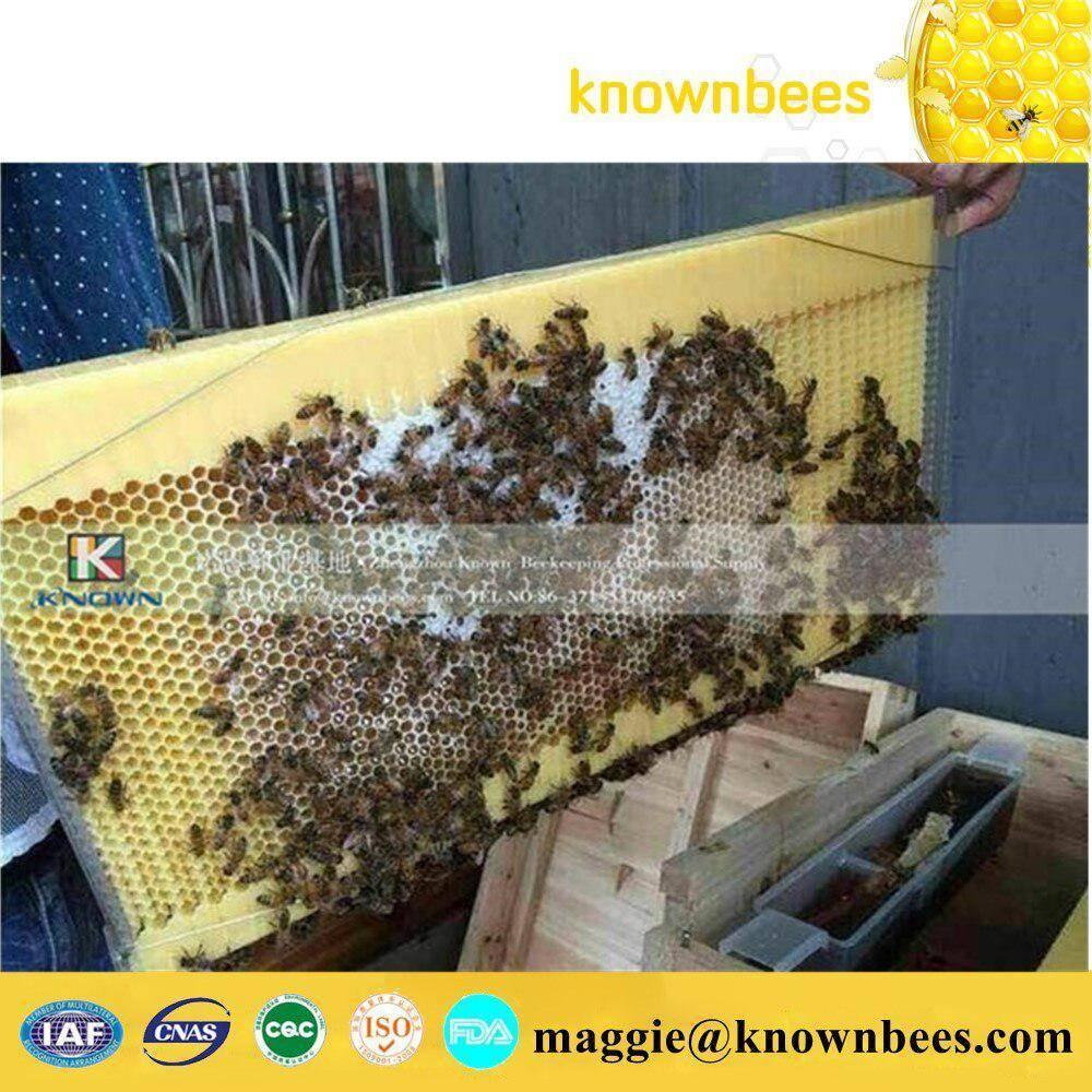 Качественные и надежные методы утепления ульев - пчеловодство | описание, советы, отзывы, фото и видео