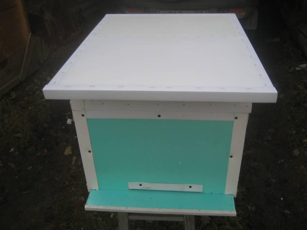 Как правильно подготовить пчел к зимовке в зависимости от модификации ульев