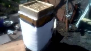 Зимовка пчёл в различных условиях: особенности утепления и критерии выбора утепляющего материала